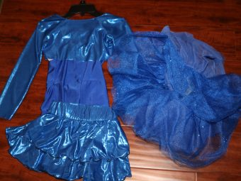 3 Piece Blue Costume (Leotard, Skirt, Tutu)